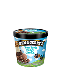 New York Fudge Chunk Original Ice Cream